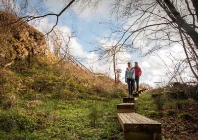Cavan_Burren_bog_bridge_Walking_sml