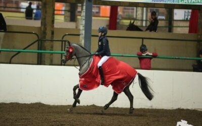 Cavan Equestrian Centre