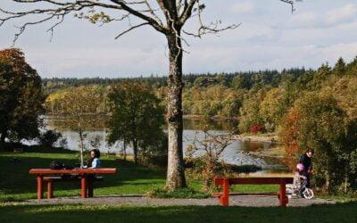 Killykeen Forest Park